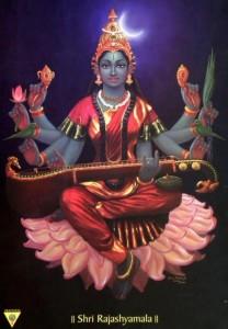Goddess Raja shymala or Raja Matangi
